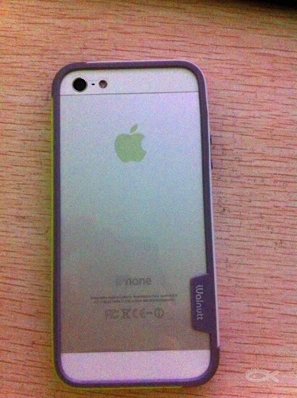 清理两部垃圾手机《国行助手4和港版苹果5》iphone6pp苹果一键出售苹果图片