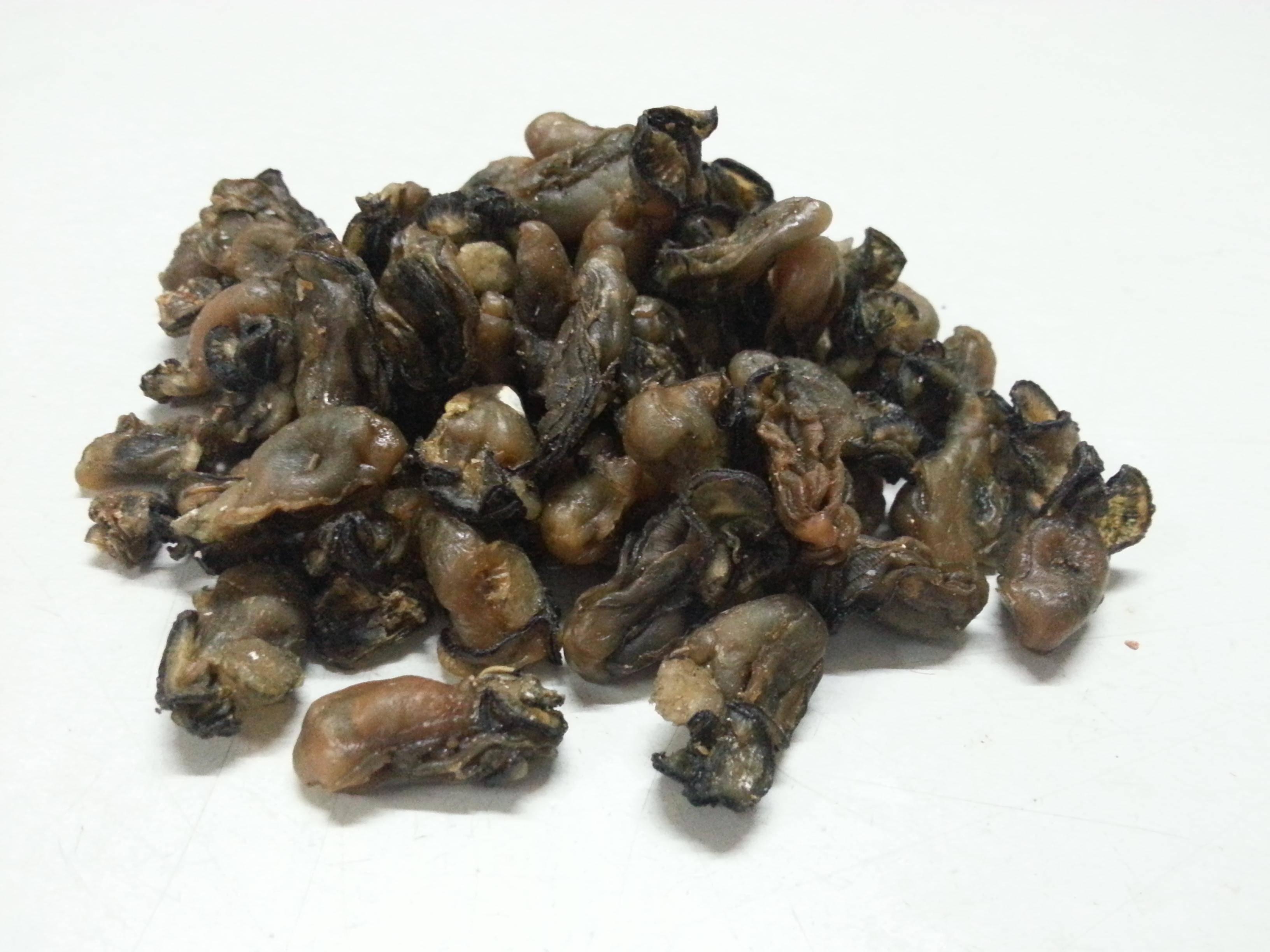 海蛎干的吃法_哪些人不能吃海蛎干_食材_养生之道网