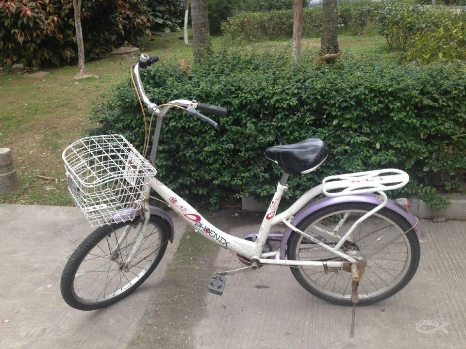 自行车名称图解
